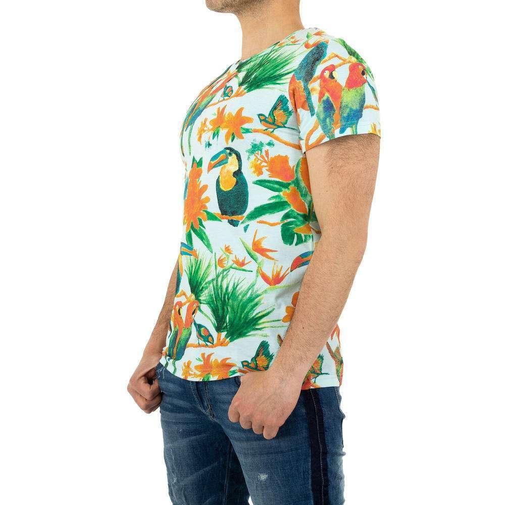 Tricou bărbătesc marca Glo Story - albastru - image 2