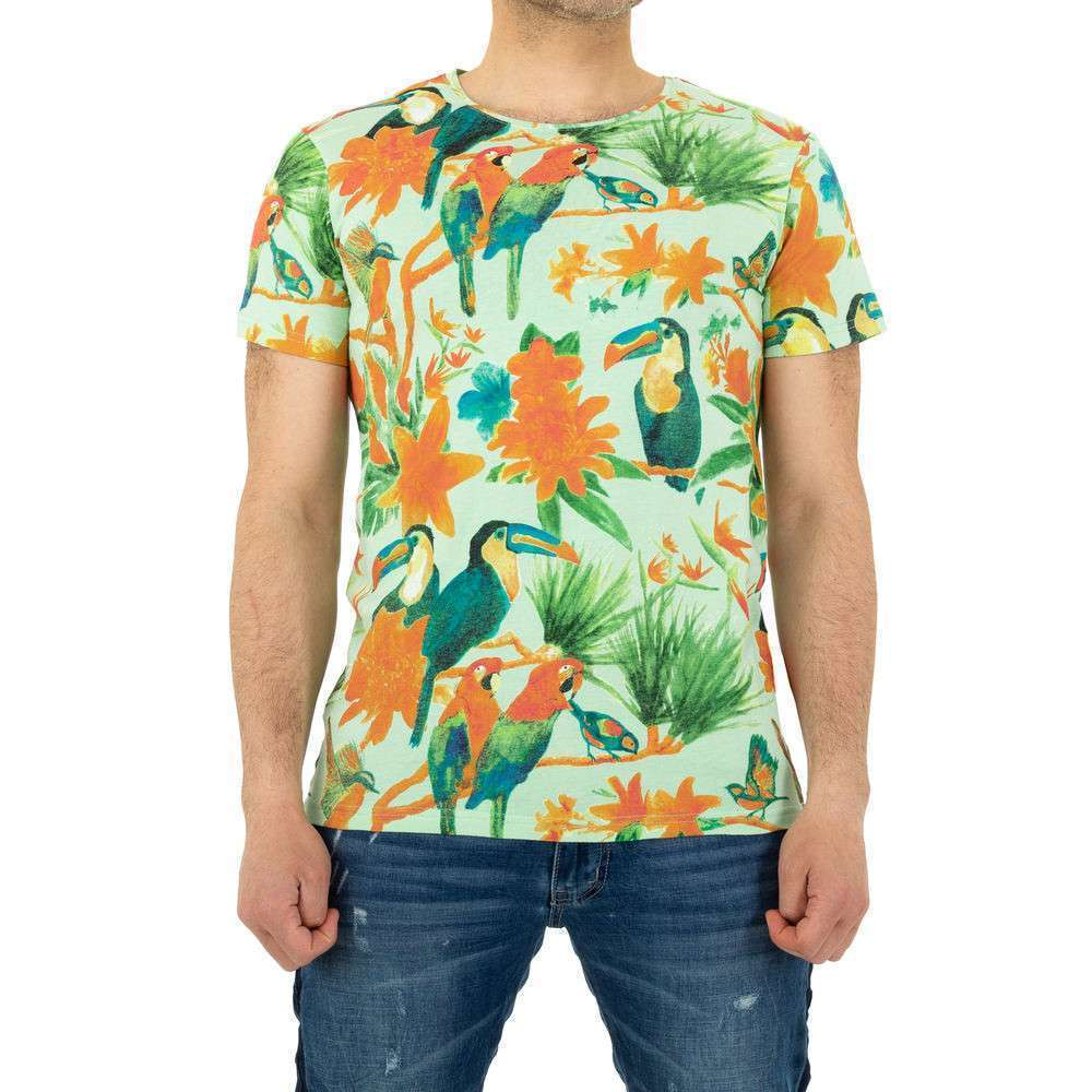 Tricou bărbătesc marca Glo Story - verde